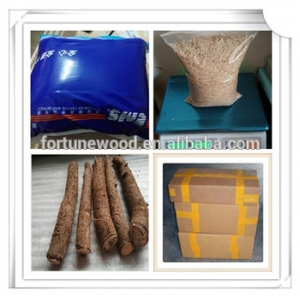 Fresh supply seeds types paulownia seeds for planting